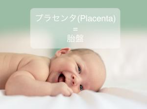 cop10-placenta